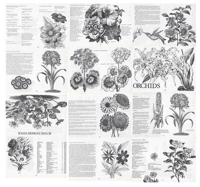 Vintage Plant Book collage pak ***PRINTED VERSION*** 12 pages