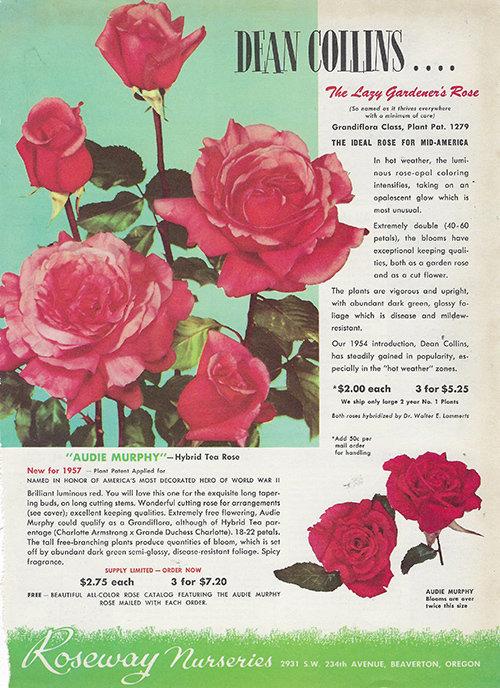 Flower Garden Book collage pak vintage 10 pages instant download