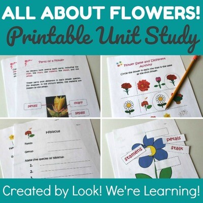 All About Flowers Unit Study
