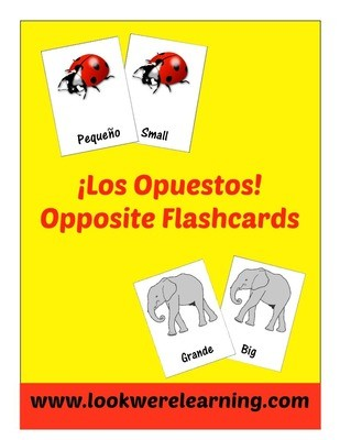 Spanish Opposites Flashcards