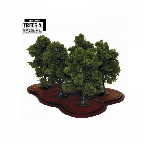 Young Ash Trees (5x) Eiche / Esche - 4Ground