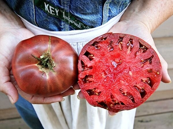 Heirloom Cherokee Purple Tomatoes