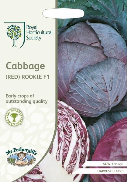 RHS Cabbage (Red) Rookie F1