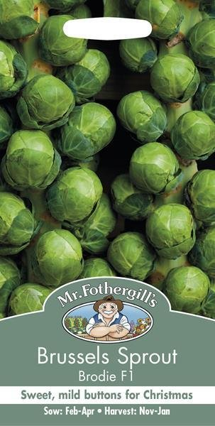 Brussels Sprout Brodie F1 Seeds