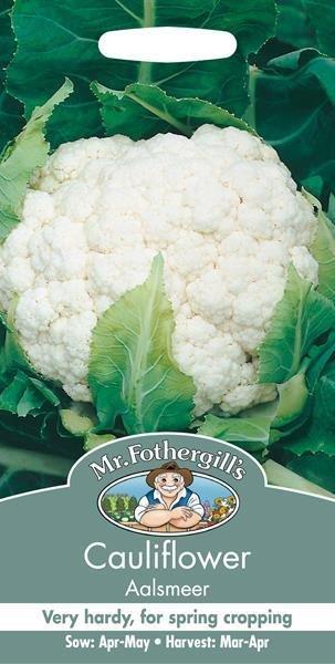 Cauliflower Aalsmeer Seeds