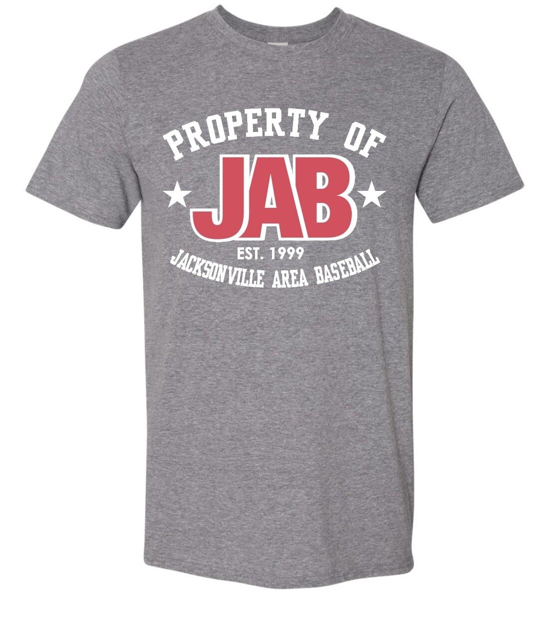 JAB-8000 Gildan - DryBlend® T-Shirt