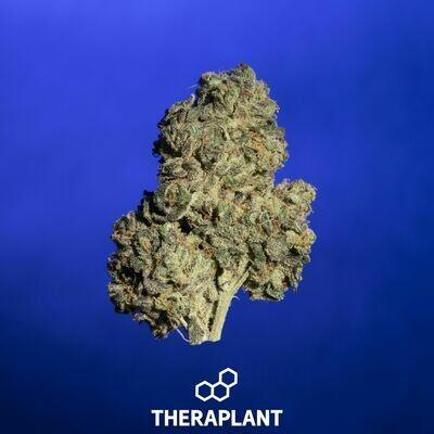 Bablica T25 8043 - 3.5g Flower (Theraplant)