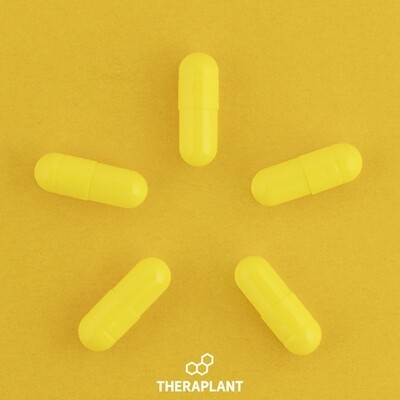 Biscay T50 8498 - 10 Capsules (Theraplant)