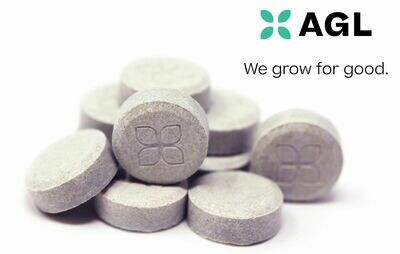 Indicol Tablets NDC: 9143 - 10 x 20mg (AGL)