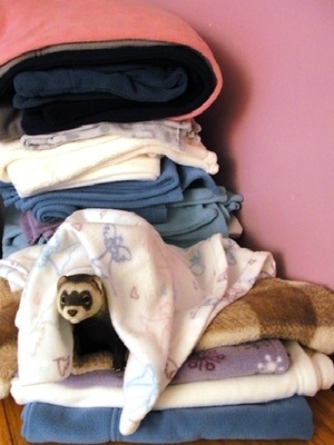 4-5 Pc Giving Tree Super Soft Fleece Bedding Special