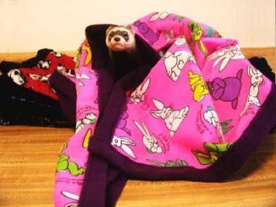 Lap of Luxury Ferret Sleep Blanket