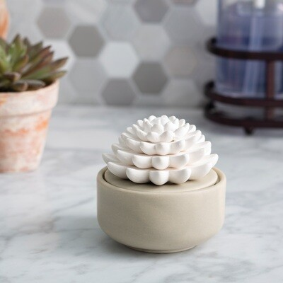 Succulent Porcelain Oil Diffuser Airome