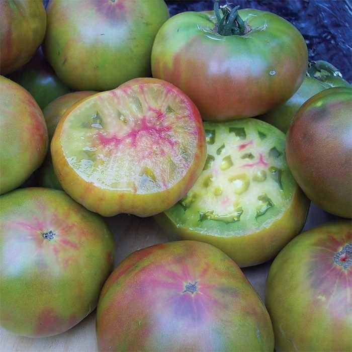 Ananas Noire Tomato Plant