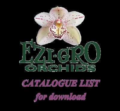 All Paphiopediliums List 2016