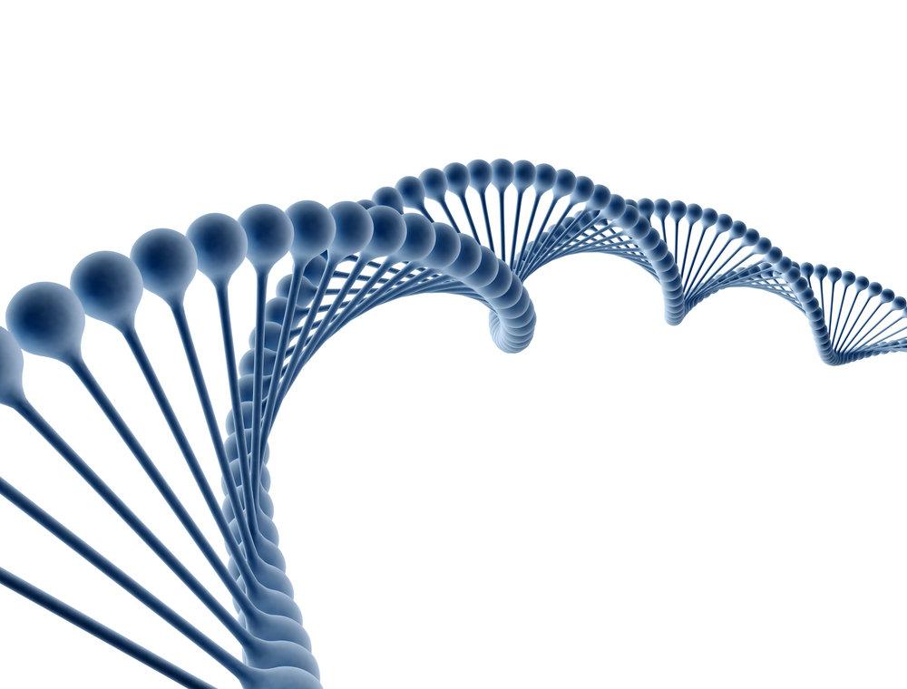 Genetic Tests