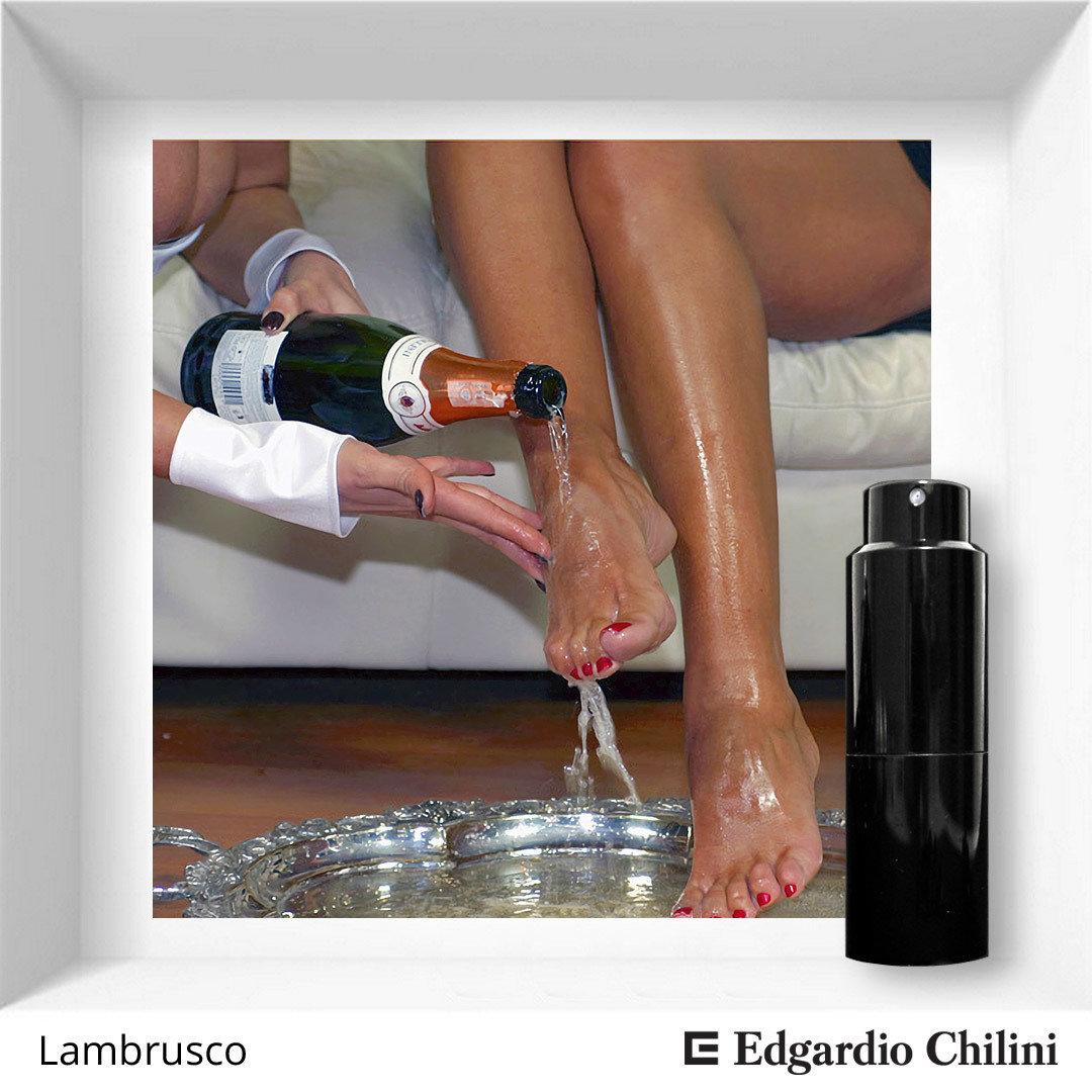 Edgardio Chilini, Lambrusco, bright fruity fragrance