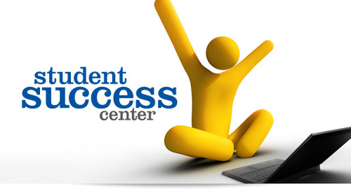 Student professional internship set up and placement.  $100 per hour.