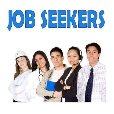Job seeker resume writing and revision services.  $100 per hour.