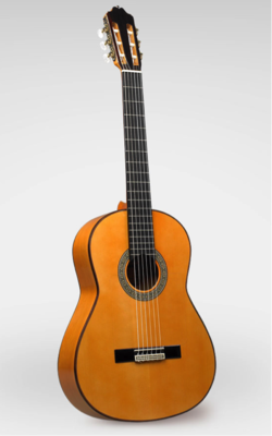 Estevé 9F - Professional Level Flamenco Guitar - All Solid Woods - Handcrafted in Valencia, Spain