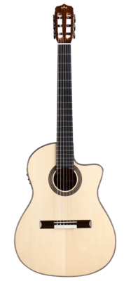 Cordoba Fusion 14 Maple - Acoustic Electric Nylon String Classical Guitar with Cordoba Archtop Humicase - Brown
