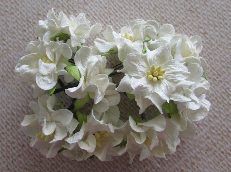 Gardenias - Click to Select