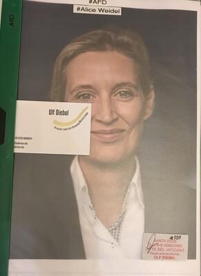 AFD Politikerin Alice Weidel
