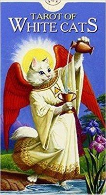 Baraldi Severino: Tarot of White Cats
