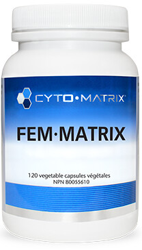 Fem-Matrix