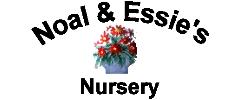 Noal and Essies Nursery