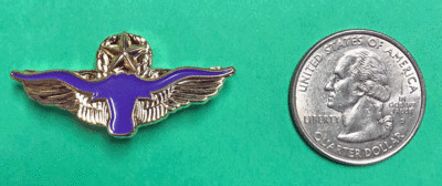 Lapel Pin, Fort Worth Aviation Museum logo