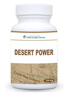 Desert Power