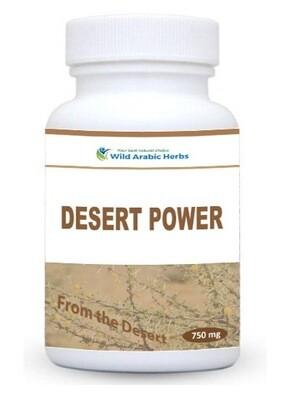 Desert Power
