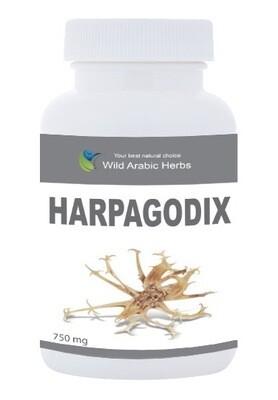 Harpagodix
