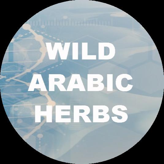 Wild Arabic Herbs