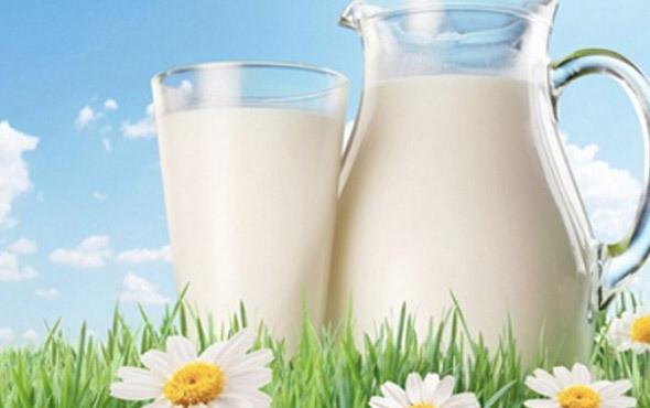 Skim Milk - For Pets
