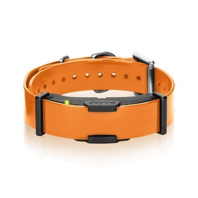 Dogtra ARC Additional Receiver (Orange)