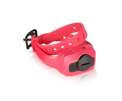 Dogtra iQ CLiQ Additional Receiver/Collar (Pink)
