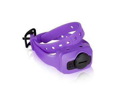 Dogtra iQ CLiQ Additional Receiver/Collar (Purple)