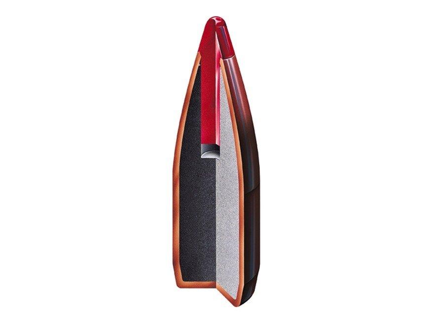 22 CAL .224 40GR V-MAX - 100/BOX