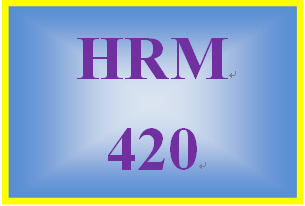 HRM 420 Week 1 Risk Management Issues