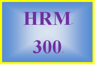 HRM 300 Week 4 Employee Training and Career Development Paper