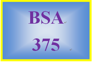 BSA 375 Week 4 Learning Team: Service Request SR-kf-013 Paper (Preparation)
