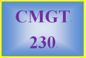 CMGT 230 Week 4 Learning Team Organizational Guidance Document, Phase 3