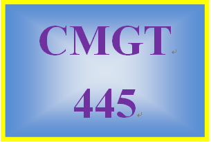 CMGT 445 Week 2 Individual: Managerial Issues