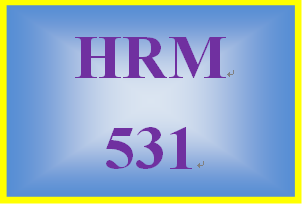 HRM 531 Week 4 Learning Team Reflection