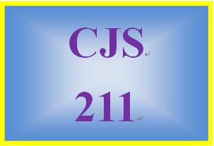 CJS 211 Week 1 Ethics Inventory