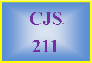 CJS 211 Week 3 Ethical Dilemma Worksheet: Prosecutors