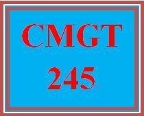 CMGT 245 Week 1 Individual Assessing Risk