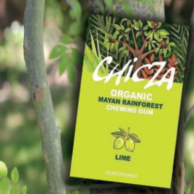 Chicza Organic Rainforest Chewing Gum -  Lime
