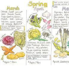 Seasonal fruit and veg Chart